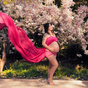 babybauchbild schwangere vor magnolie im fruehsommer in bamberg