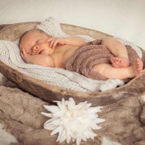 babyfoto neugeborenes in holzschale bei neugeborenenshooting daheim in bamberg von mobiler fotografin